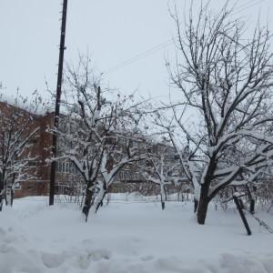 Լուսանկարը՝ Նանե Եղիազարյանի