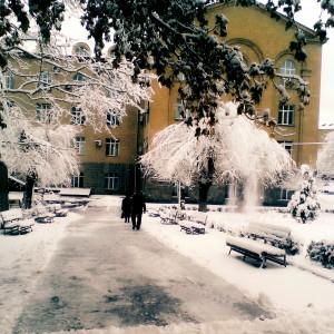 Լուսանկարը` Հայարփի Բաղդասարյանի