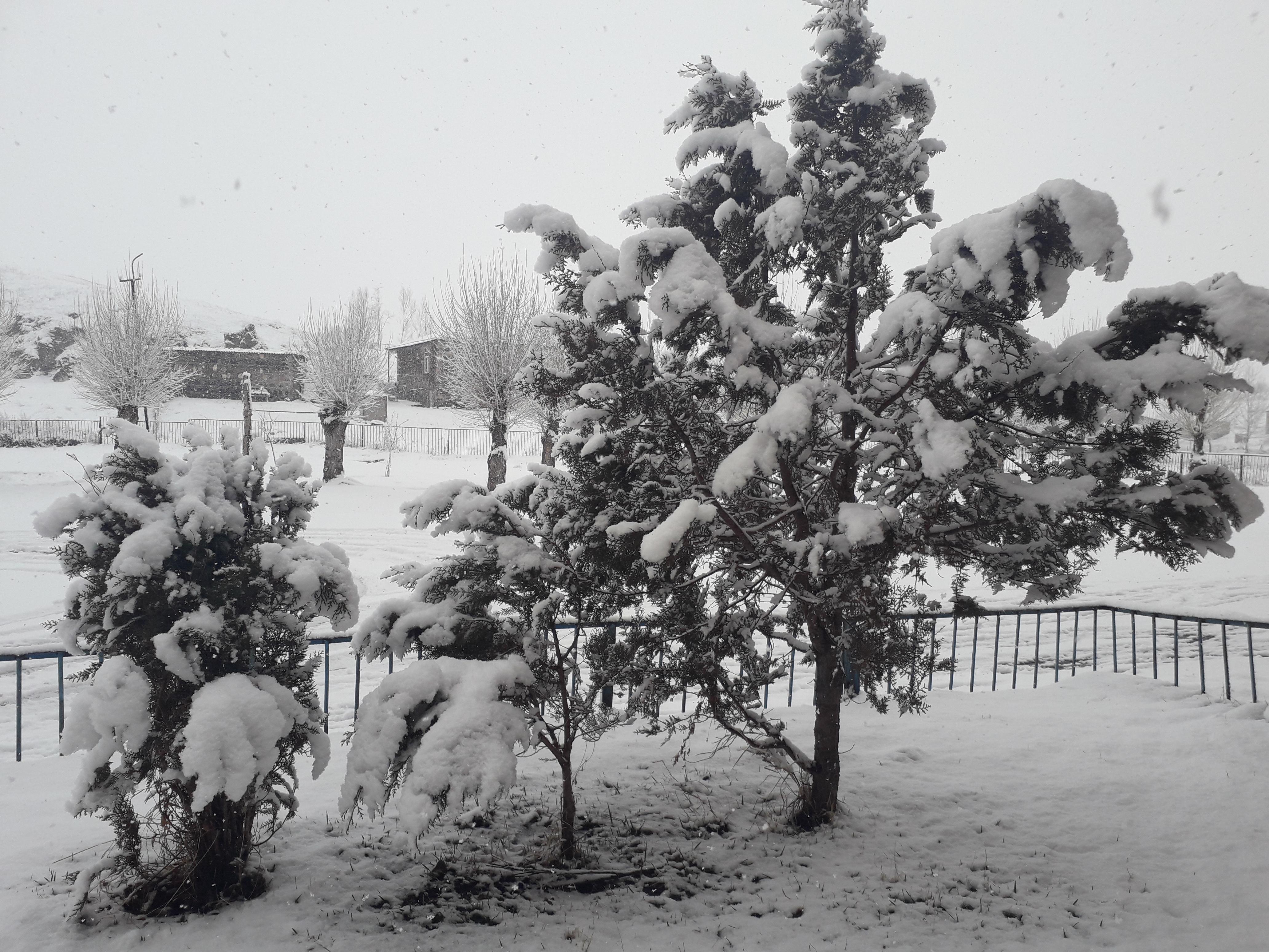 Լուսանկարը՝ Զարուհի Գեւորգյանի