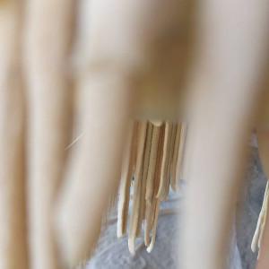 Լուսանկարը` Լաուրա Սեկոյանի