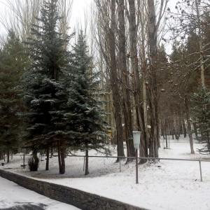 Լուսանկարը` Մանե Մինասյանի, Արարատի մարզ, ք. Վեդի