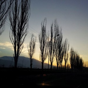 Լուսանկարը` Անուշ Մուրադյանի