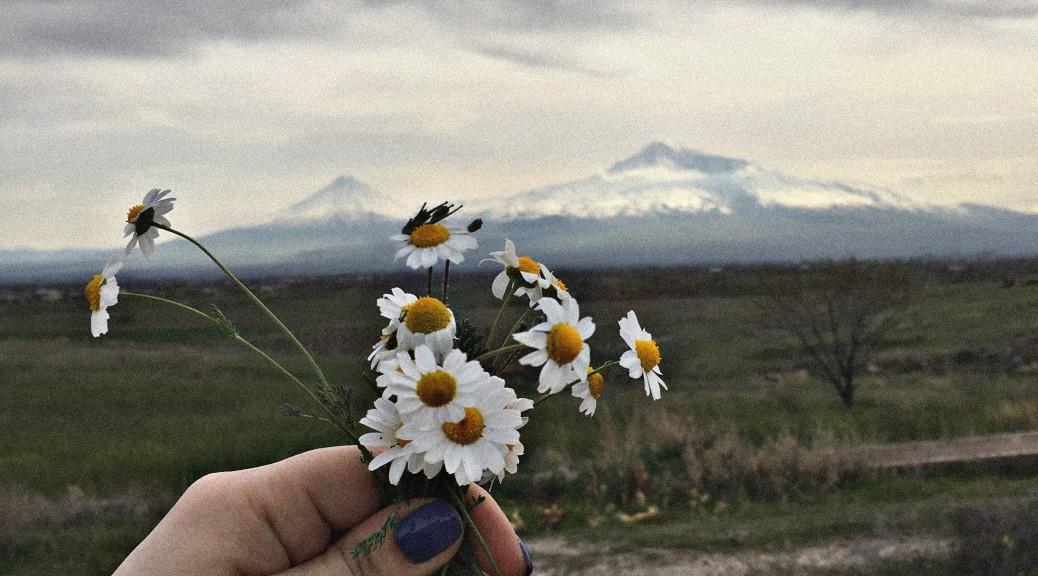 Լուսանկարը` Մանե Մինասյանի