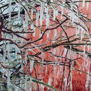 Լուսանկարները` Լուսինե Բաբայանի